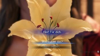 Antworten Blume von Aerith